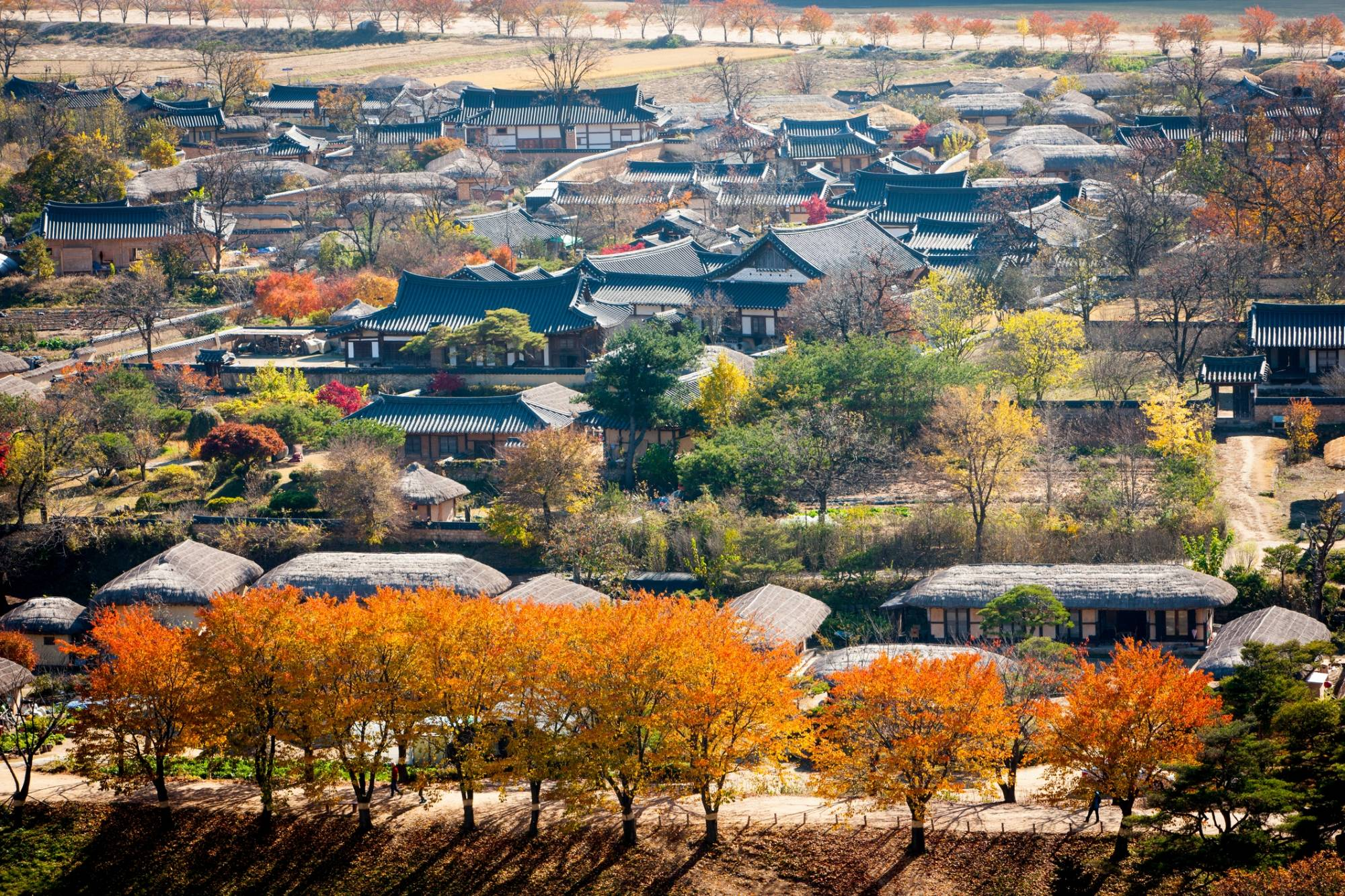 , South Korea: The Best Places to Go, Culturenesia