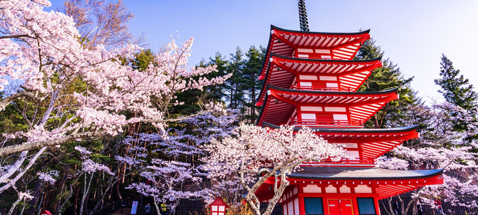 Best Time to visit Japan, When is the Best Time to visit Japan?, Culturenesia