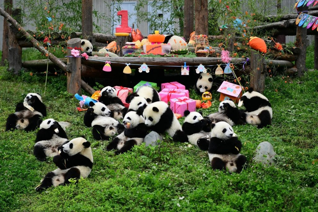 , 10 Surprising Things about China, Culturenesia